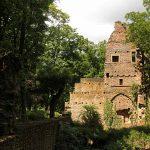 Klosterruine Disibodenberg